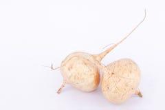 Το φασόλι διοσκορέων (Jicama) είναι βολβοειδή τρόφιμα φρούτων λαχανικών ρίζας στο άσπρο υπόβαθρο Στοκ εικόνες με δικαίωμα ελεύθερης χρήσης