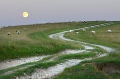 Το φεγγάρι και κατεβάζει Στοκ Εικόνες