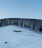 Το φεγγάρι πέρα από το χειμερινό δάσος Στοκ Φωτογραφία