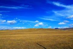 Το φθινοπωρινό τοπίο του οροπέδιου Qinghai - του Θιβέτ Στοκ φωτογραφίες με δικαίωμα ελεύθερης χρήσης
