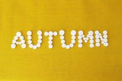 Το φθινόπωρο ` λέξης ` έχει το λευκό Στοκ Φωτογραφία