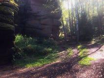 Το φθινόπωρο έρχεται Στοκ Φωτογραφία