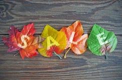 το φθινόπωρο αφήνει την κόκκινη λέξη πώλησης Στοκ Εικόνα