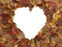 Το φθινόπωρο αφήνει τη μορφή καρδιών πλαισίων στοκ φωτογραφίες