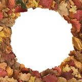 Το φθινόπωρο αφήνει τη μορφή κύκλων πλαισίων στοκ φωτογραφίες