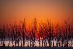 Το φθινόπωρο είναι κόκκινο goin Στοκ Εικόνες