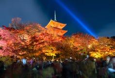 Το φθινόπωρο ζωηρόχρωμο με το φως παρουσιάζει στο ναό dera Kiyomizu στο Κιότο Στοκ Εικόνα