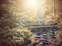 Το φθινόπωρο Πάγκος μύθου φαντασίας στο πάρκο με τη σκηνή ανατολής Στοκ Φωτογραφίες