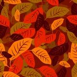 Το φθινόπωρο πεσμένος αφήνει το άνευ ραφής υπόβαθρο σχεδίων ελεύθερη απεικόνιση δικαιώματος