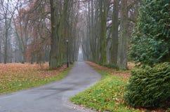 Το φθινόπωρο σε ένα ευτυχές πάρκο στην πορεία Στοκ Φωτογραφία