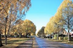 Το φθινόπωρο στην οδό σε Ljungby - τη Σουηδία Στοκ φωτογραφία με δικαίωμα ελεύθερης χρήσης
