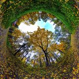 Το φθινόπωρο χαλαρώνει Στοκ Εικόνες