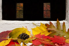 το φθινόπωρο χρωματίζει τ&alph Στοκ Εικόνες