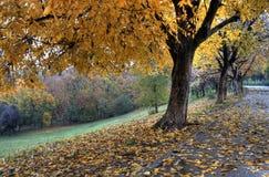 Το φθινόπωρο Στοκ Φωτογραφίες