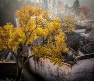 Το φθινόπωρο Anhui Κίνα Στοκ φωτογραφία με δικαίωμα ελεύθερης χρήσης