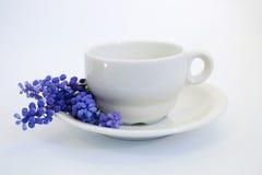 το φλυτζάνι καφέ διακοσμεί τους υάκινθους σταφυλιών Στοκ Φωτογραφία
