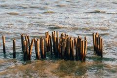 Το φράγμα μπαμπού υπερασπίζει τα κύματα στοκ φωτογραφίες με δικαίωμα ελεύθερης χρήσης