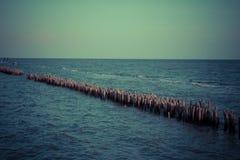 Το φράγμα μπαμπού υπερασπίζει τα κύματα στοκ εικόνα με δικαίωμα ελεύθερης χρήσης