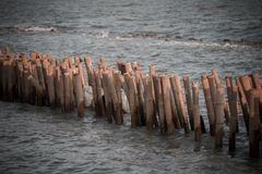 Το φράγμα μπαμπού υπερασπίζει τα κύματα στοκ φωτογραφία με δικαίωμα ελεύθερης χρήσης