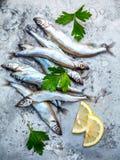 Το φρέσκο επίπεδο αυγών ψαριών Shishamo σύλληψης πλήρως βάζει στο shabby BA μετάλλων Στοκ Εικόνες