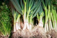 Το φρέσκο κρεμμύδι για πωλεί στη φρέσκια αγορά στην επαρχία Στοκ φωτογραφία με δικαίωμα ελεύθερης χρήσης