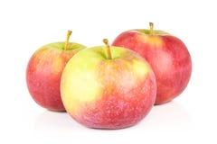 Το φρέσκο κόκκινο μήλο james απομονωμένος στο λευκό στοκ φωτογραφίες