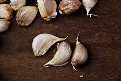 Το φρέσκο σκόρδο χωρίζει Στοκ φωτογραφία με δικαίωμα ελεύθερης χρήσης