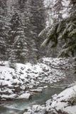 Το φρέσκο χιόνι καλύπτει τις όχθεις ποταμού και τα δέντρα, συριστήρας, Π.Χ. στοκ φωτογραφία