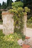Το φρεάτιο στον κήπο του μοναστηριού Cimiez Στοκ Φωτογραφίες