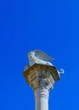 Το φτερωτό λιοντάρι του σημαδιού του ST, στην πλατεία delle Erbe, Βερόνα Στοκ Εικόνες