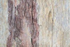 Το φυσικό αρχικό της υφής σχέδιο χαλασμένο σε παλαιό το ξύλο στους φυσικούς όρους υπαίθριος στοκ εικόνα με δικαίωμα ελεύθερης χρήσης