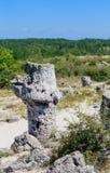 Το φυσικό φαινόμενο Pobiti Kamani, γνωστό ως πέτρινο δάσος Στοκ Εικόνα