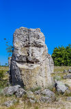 Το φυσικό φαινόμενο Pobiti Kamani, γνωστό ως πέτρινο δάσος Στοκ φωτογραφία με δικαίωμα ελεύθερης χρήσης