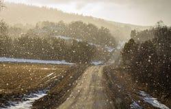 Το φως λάμπει μέσω του χιονώδους καιρού σε μια κυρτή εθνική οδό, αναδρομικά φωτισμένα μόρια χιονιού Στοκ φωτογραφίες με δικαίωμα ελεύθερης χρήσης
