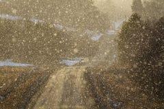 Το φως λάμπει μέσω του χιονώδους καιρού σε μια κυρτή εθνική οδό, αναδρομικά φωτισμένα μόρια χιονιού Στοκ Φωτογραφία