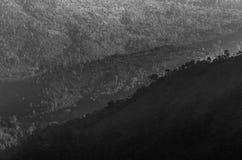 Το φως και η σκιά Στοκ Εικόνες