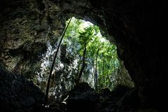 Το φως κατεβαίνει στη σπηλιά ασβεστόλιθων Στοκ φωτογραφίες με δικαίωμα ελεύθερης χρήσης
