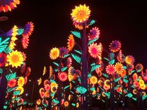 Το φως νύχτας παρουσιάζει Στοκ φωτογραφία με δικαίωμα ελεύθερης χρήσης