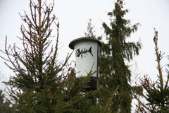 Το φως στο δάσος Στοκ εικόνα με δικαίωμα ελεύθερης χρήσης