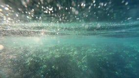 Το φως του ήλιου φωτίζει την κοραλλιογενή ύφαλο υποβρύχια, σε αργή κίνηση απόθεμα βίντεο