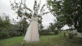 Το φόρεμα της νύφης κρεμά σε ένα δέντρο μηλιάς Πολύ όμορφος και κομψός γάμος απόθεμα βίντεο
