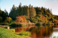 Το φύλλωμα φθινοπώρου πετά την αντανάκλαση στα ήρεμα νερά στοκ φωτογραφίες