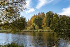 Το φύλλωμα φθινοπώρου πετά την αντανάκλαση στα ήρεμα νερά στοκ εικόνες