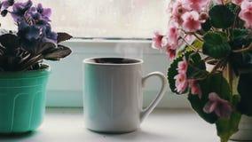 Το φλυτζάνι με ένα ζεστό ποτό με έναν ατμό που στέκεται σε ένα windowsill που περιβάλλεται με το άνθισμα ανθίζει απόθεμα βίντεο