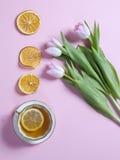 Το φλυτζάνι του τσαγιού με το λεμόνι, ρόδινες τουλίπες ανθίζει τη ρύθμιση με την ξηρά πορτοκαλιά φέτα στο ρόδινο υπόβαθρο Στοκ Εικόνες
