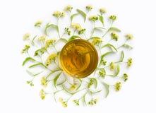 Το φλυτζάνι το τσάι που περιβάλλεται από τα lindens στο άσπρο υπόβαθρο Θεραπεύοντας ποτό Τοπ όψη Στοκ φωτογραφίες με δικαίωμα ελεύθερης χρήσης
