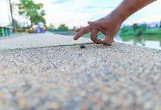 το χέρι απομόνωσε το εντάξει λευκό σημαδιών ατόμων στην πέτρα στη δημόσια επίλεκτη εστίαση πάρκων με το ρηχό βάθος του τομέα Στοκ Εικόνα