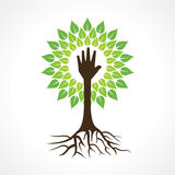 Το χέρι βοηθείας κάνει το δέντρο Στοκ Εικόνα
