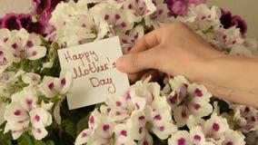 Το χέρι γυναικών ` s αφήνει μια ευχετήρια κάρτα για την ημέρα μητέρων ` s στα όμορφα φρέσκα λουλούδια απόθεμα βίντεο