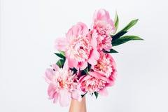 Το χέρι γυναικών ` s κρατά την ανθοδέσμη των ανοικτό ροζ peonies στοκ εικόνες